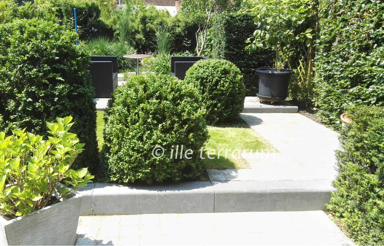 Jardin créé par Ille Terrarum - un bel équilibre entre espaces naturels et sauvages et parties plus contemporaines - buis et haies taillés, fleurs et graminées libres - avec un plan d'eau