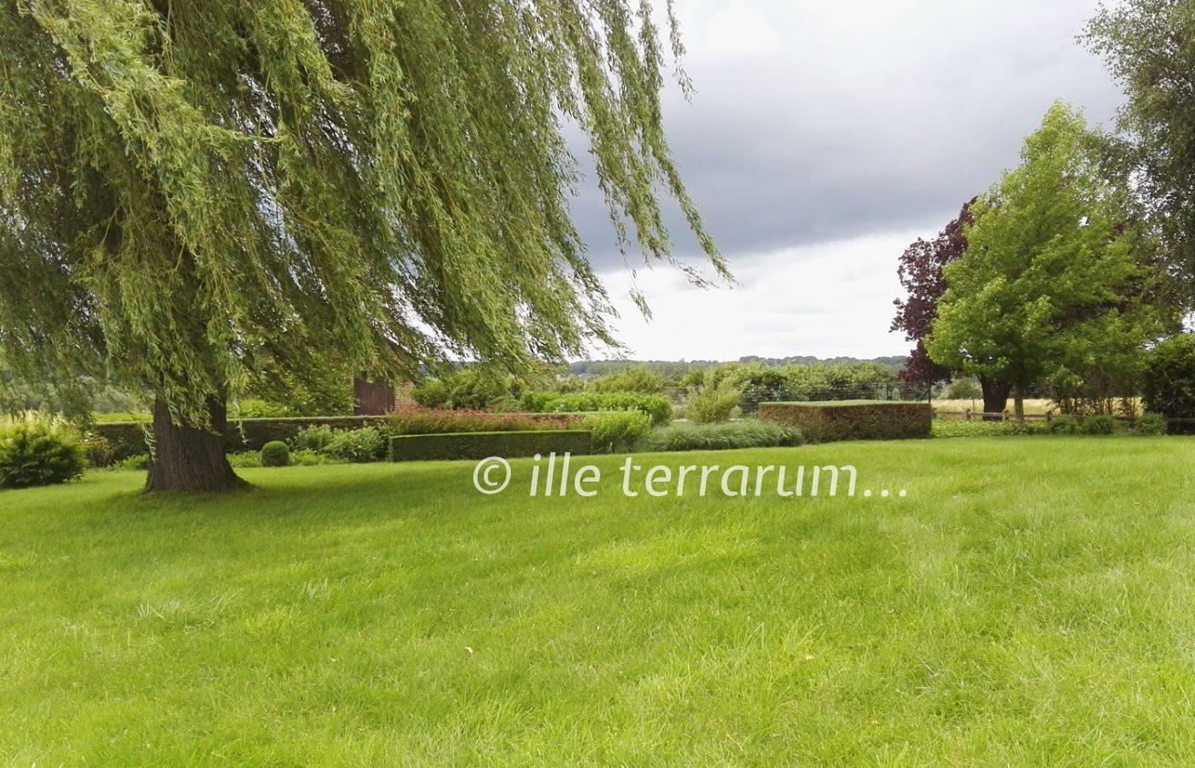 Jardin créé par Ille Terrarum - un bel équilibre entre espaces naturels et sauvages et parties plus contemporaines - buis et haies taillés, fleurs et graminées libres